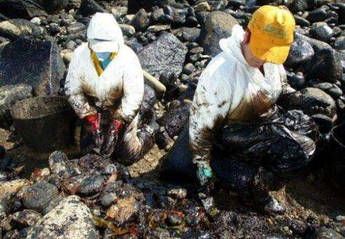 Workers clean up oil-coated rocks on the coast in Muxia village, northwestern Spain, May 19, 2003