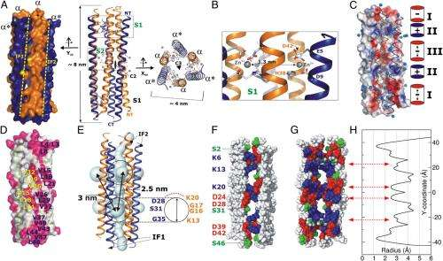 Antibiotics 2.0: The atomic structure and mechanism of mammalian host-defense peptides