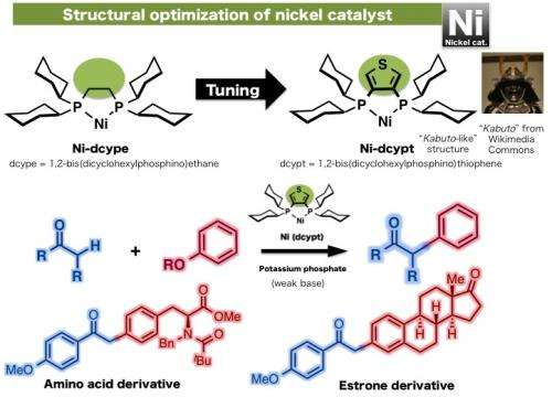 A new 'Kabuto-like' nickel catalyst forms bioactive frameworks from phenol derivatives