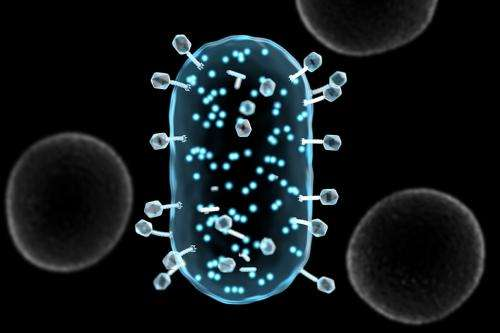 Brighter future for bacteria detection