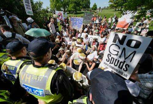 Demonstrators stage a sit-in to protest an experiemntal trial of genetically modified wheat in Harpenden, Hertfordshire, on May