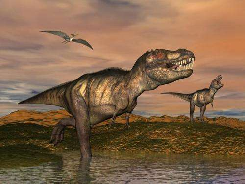 How dinosaurs shrank, survived and evolved into birds