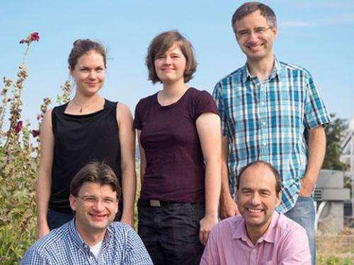 Hydrogen powers important nitrogen-transforming bacteria