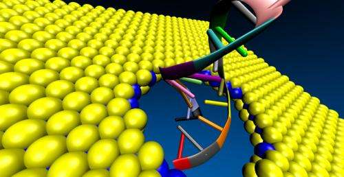 New material could enhance fast and accurate DNA sequencing