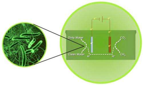 Novel system uses microbes to treat, extract power from wastewater