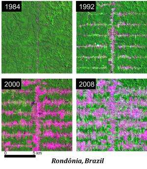 Patterns of deforestation may increase Amazon's vulnerability to drought