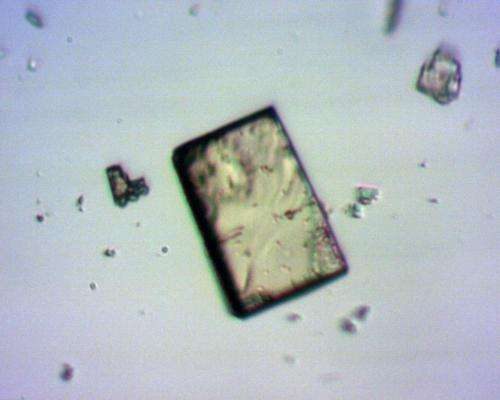 Swiss cheese crystal, or high-tech sponge?