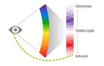 The human eye can see 'invisible' infrared light