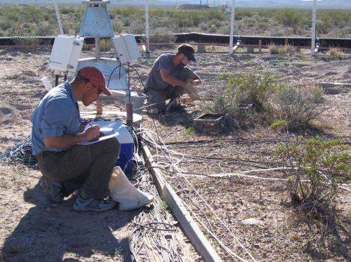 Researchers find arid areas absorb unexpected amounts of atmospheric carbon