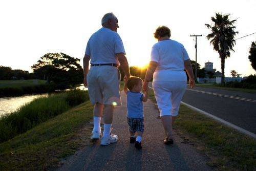 Understanding grandparent–grandchild 'investment'