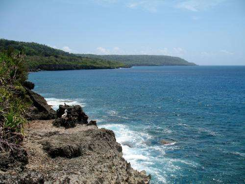 Chronology of Christmas Island's volcanic history unearthed