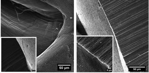 Nanotube forests drink water from arid air
