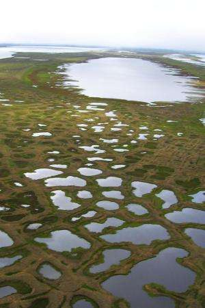 Study: Climate-cooling arctic lakes soak up greenhouse gases