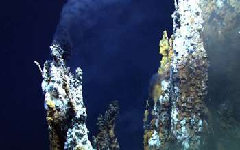 Undersea warfare: Viruses hijack deep-sea bacteria at hydrothermal vents
