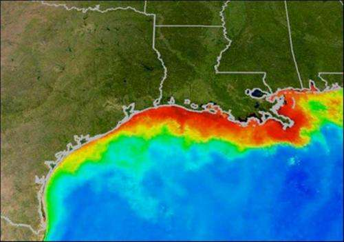 Researchers predict average Gulf of Mexico 'dead zone,' slightly above-average in Chesapeake Bay