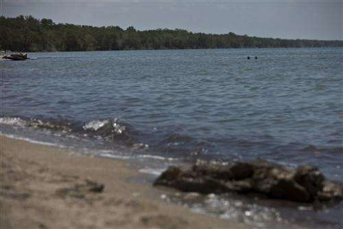 Cuba looks to mangroves to fend off rising seas