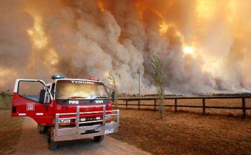 File photo taken in February 2009 shows a fireman monitoring a fire raging in the Bunyip State Park during Victoria's deadly Bla