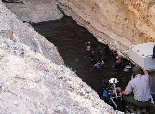 Climate change puts endangered Devils Hole pupfish at risk of extinction