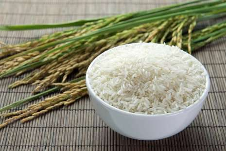 Scientists ID genes that could lead to tough, disease-resistant varieties of rice