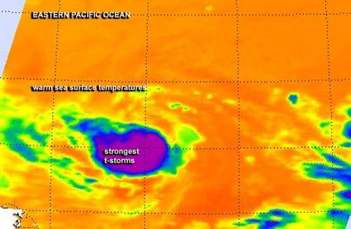Tropical Storm Karina: status quo on infrared satellite imagery