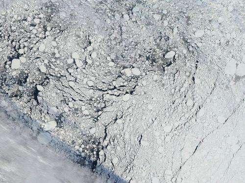 Seasonal Arctic summer ice extent still hard to forecast, study says