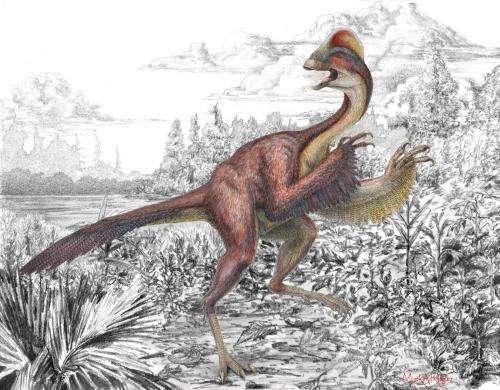 A 'chicken from hell' dinosaur