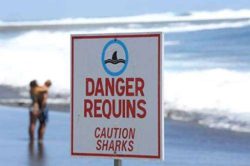 "A couple stands on the beach near a sign reading ""Caution Sharks"" in Etang-Sale, a region of the La Reunion island Fre"