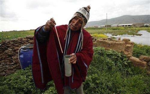 Age-old indicators under stress in high Bolivia