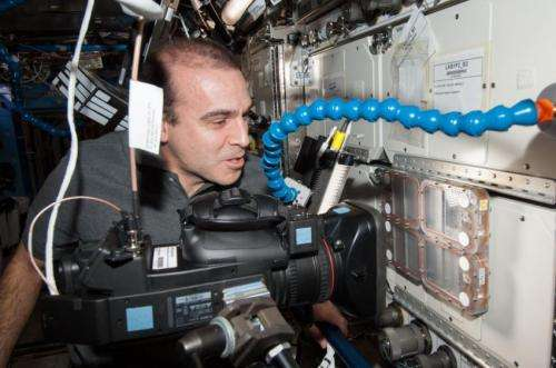 All together now -- a lesson from Space Station 'ant-stronauts'