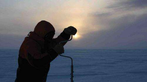 Antarctic microbes demonstrate high tolerance