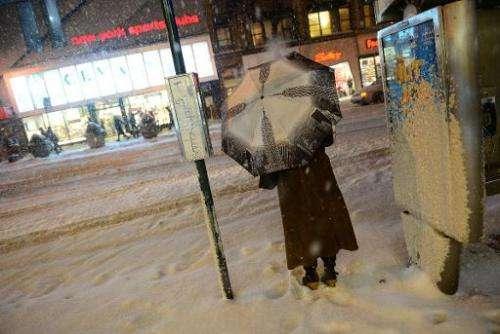 A pedestrian battles snow in New York, January 21, 2014