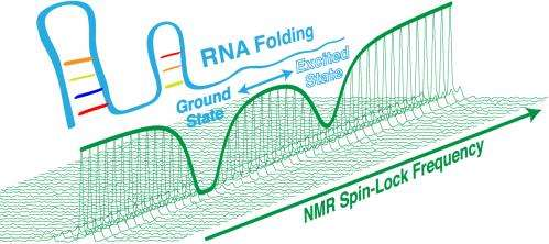 A powerful technique to further understanding of RNA