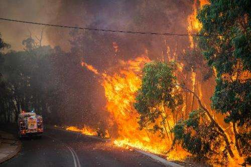 A wildfire in the Stoneville area, a suburb east of Perth in the state of Western Australia, on January 12, 2014