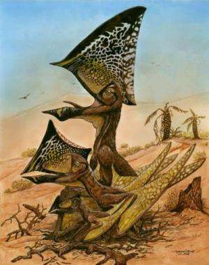 Bones from nearly 50 ancient flying reptiles discovered