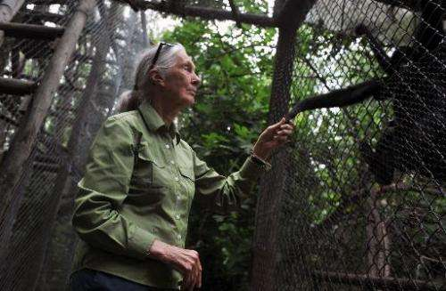 British anthropologist and primatologist Jane Goodall takes the hand of a Spider Monkey during her visit to the Rehabilitation C