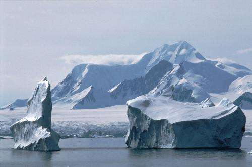 Climate related iceberg activity has massively altered life on the seabed