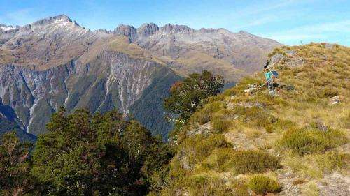 Deep Alpine Fault sensitive to nearby earthquakes