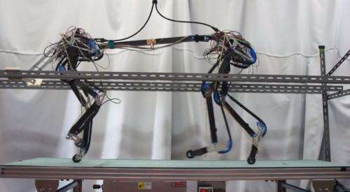 Osaka team fine-tunes quadruped robot Pneupard  (w/ Video)