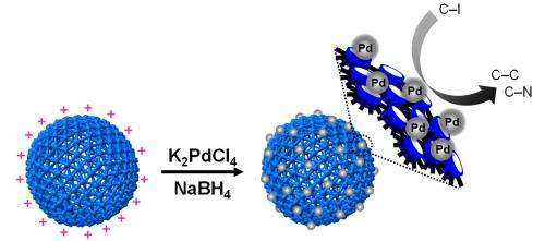 Eco-friendly versatile nanocapsules developed