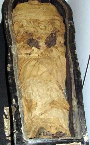 Embalming study 'rewrites' key chapter in Egyptian history