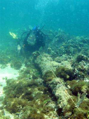 Explorer: Shipwreck off Haiti may be Christopher Columbus' Santa Maria (Update)