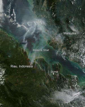 Fires in Indonesia, July 2014
