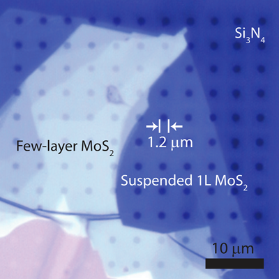 First measurement of molybdenum disulfide's thermal conductivity