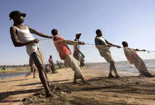 Fishermen pull up a fishing net on the shores of Lake Malawi, near the Makawa Fishing Village in the district of Mangochi on May