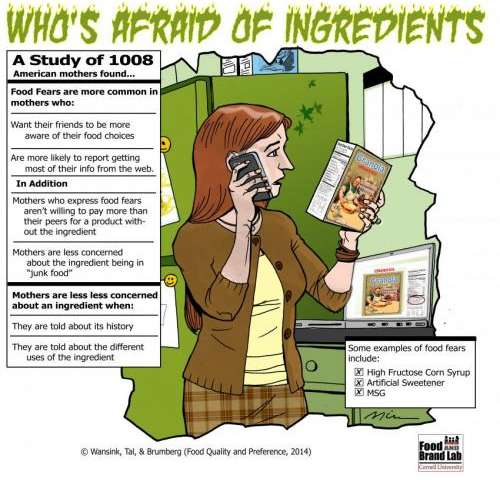 Food ingredient fears