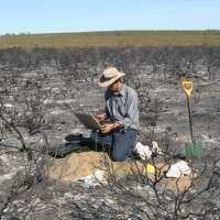 Frequent fire and drying climate threaten WA plants
