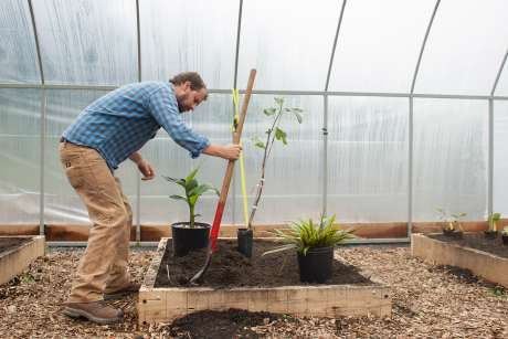 High tunnels to simulate climate change