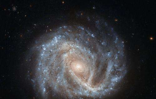 Image: Hubble eyes a curious supernova in NGC 2441