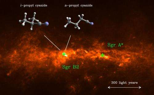 Interstellar molecules are branching out