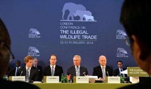 (L- R) Princes Harry, William and Charles sit alongside Foreign Secretary William Hague at the Illegal Wildlife Trade Conference